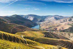 douro_valley-3-3