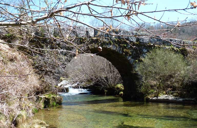 bridge-varziela
