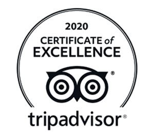 Tripadvisor Certificate of Excelence Detours