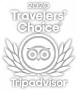 2020 Tripadvisor Travelers Choice Award Detours