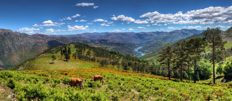 peneda-geres-national-park-cover
